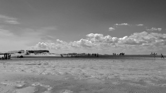 littoral-tides